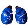 Боксерские Перчатки PowerPlay 3018 Синие 10 Унций