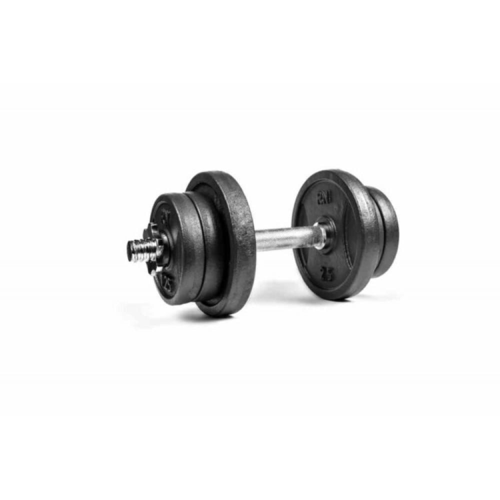 Гантель чугунная RN-Sport 11 кг