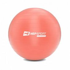 Фитбол Hop-Sport 45cm HS-R055YB light pink + насос