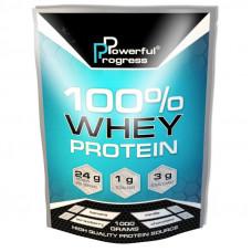 100% Whey Protein (1 kg, vanilla)