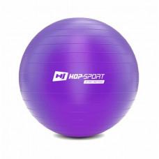 Фитбол Hop-Sport 65cm HS-R075YB violet + насос